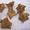 Водяной орех (рогульник,  чилим),  семена #1310741