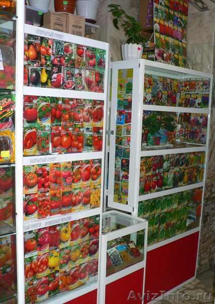 Семена овощей, цветов, трав, Объявление #83934