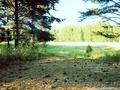 Продам земельный участок в Сказке - Изображение #2, Объявление #886392
