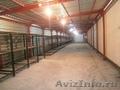 Сдам помещение под склад рядом с ТК «Атмосфера дома - Изображение #3, Объявление #1117681