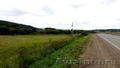 Продам землю в гектарх пригород Красноярска 4ГА 4млн - Изображение #3, Объявление #1494022