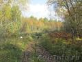 Участок 20 соток в п.Минино, с лесом - Изображение #5, Объявление #1497947