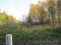Участок 20 соток в п.Минино, с лесом - Изображение #6, Объявление #1497947