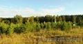 Продам участок Элита 19сот ИЖС лес 1300тыс, Объявление #1287640