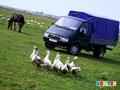 Такси грузовое Андреевское